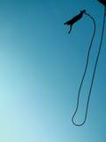 banhoppning för 08 bungee Royaltyfri Bild