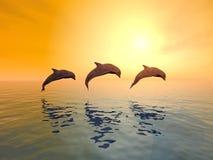Banhoppningdelfiner Arkivfoto