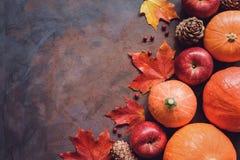 Bani, jabłek, liścia klonowego i sosny rożki, Sezonowy spadku tło Obrazy Royalty Free