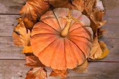 Bania i jesień liście nad starym drewnianym tłem zdjęcia royalty free