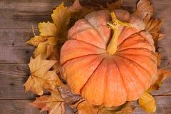 Bania i jesień liście nad starym drewnianym tłem obraz stock