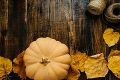 Bania i suszy liście na drewnianym tle Przestrzeń dla teksta, t fotografia royalty free