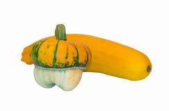 Bania i zucchini Zdjęcie Stock