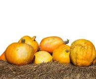 Bania jest jarzynowa z kolorem żółtym lub pomarańczowym kolorem na słomie i nas obrazy royalty free