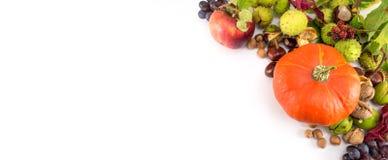 Bania z hazelnuts, kasztanami i orzechami włoskimi, Fotografia Royalty Free