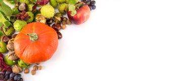 Bania z hazelnuts, kasztanami i orzechami włoskimi, Obrazy Stock