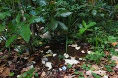 Banialuka klingerytu zanieczyszczenie Fotografia Royalty Free