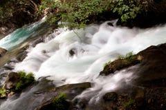 Banias de réserve naturelle de courant de Hermon Photos libres de droits