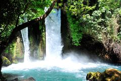 Banias falls Royalty Free Stock Photo