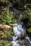 Banias vattenfall royaltyfria bilder