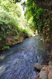 Banias Waterfall Stock Photos