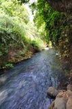 Banias Waterfall. Hermon Stream Nature Reserve, Israel Stock Photos