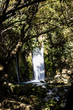 Banias Waterfall and park Royalty Free Stock Photo