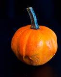 Banie dla Halloween z śmiesznymi przyjaciółmi które bawić się z duchami - Zdjęcia Stock