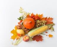 Banie, jabłka, kukurudza, bonkreta, winogrona z jesień liśćmi i halny popiół, Zdjęcia Royalty Free
