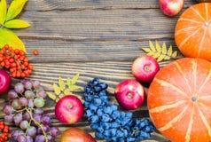 Banie, jabłka, winogrona i rowan jagody na drewnianym tle, Pojęcie jesieni żniwo Zdjęcia Royalty Free