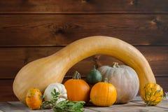Banie na drewnianym tle, kopii przestrzeń dla teksta Halloween, dziękczynienie dzień lub sezonowy jesienny, horyzontalny zdjęcia royalty free
