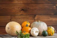 Banie na drewnianym tle, kopii przestrzeń dla teksta Halloween, dziękczynienie dzień lub sezonowy jesienny, horyzontalny obrazy stock