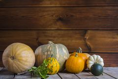 Banie na drewnianym tle, kopii przestrzeń dla teksta Halloween, dziękczynienie dzień lub sezonowy jesienny, horyzontalny fotografia royalty free