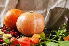 Banie z żółtymi jesień liśćmi, kwiatami i jagodami, Zdjęcia Royalty Free