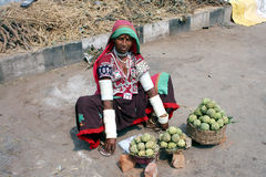 Banjara woman selling custard apple on roadside Royalty Free Stock Photography