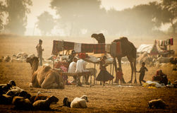 banjaras indyjscy Fotografia Stock