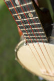 Banjo Detail Stock Photo