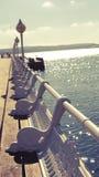 Bank auf dem Pier lizenzfreie stockbilder
