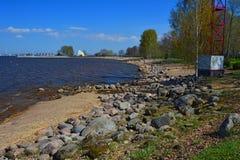 Bank av golfen av Finland i Peterhof, St Petersburg, Ryssland Royaltyfri Bild