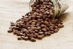 Bank av kaffebönor Royaltyfri Bild
