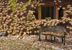 Bank bij de herfst Stock Foto