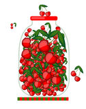 Bank with cherry jam for your design Royalty Free Stock Photography