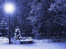 Bank, christmastree und Laterne lizenzfreies stockfoto
