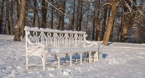 Bank in de winterpark Royalty-vrije Stock Foto's