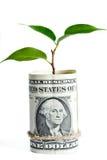 Bank deposit Royalty Free Stock Photo