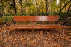 Bank des Sitzens im Park Stockfoto