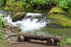 Bank dichtbij de rivier stock afbeelding