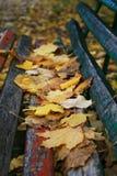 Bank die met gevallen bladeren wordt behandeld Stock Foto