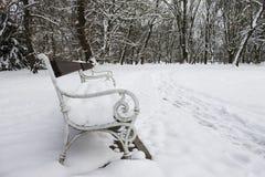 Bank die met sneeuw wordt behandeld Stock Foto