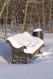 Bank die met sneeuw wordt behandeld Royalty-vrije Stock Foto's