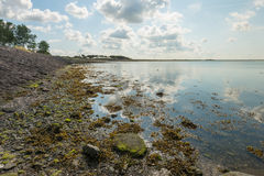 Bank of a Dutch estuary in backlight Stock Photography