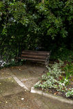 Bank in een botanische tuin Royalty-vrije Stock Foto's