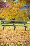 Bank en Dalingsbladeren in het Park royalty-vrije stock foto