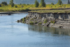 Bank erosion on the Buffalo Fork River, Moran, Wyoming. Stock Photography