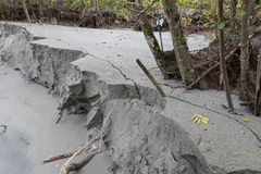 Bank with erosion Stock Photo