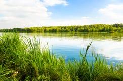 bank green lake Zdjęcia Royalty Free