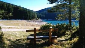 Bank in het Durmitor-Park die het Zwarte meer in de herfst Zonnige warme dag overzien stock afbeeldingen
