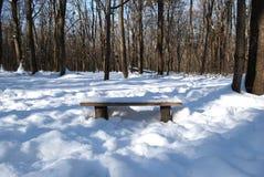 Bank in het hout in de sneeuw royalty-vrije stock foto's