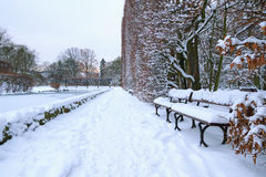 Bank in het park bij de sneeuwwinter Stock Fotografie