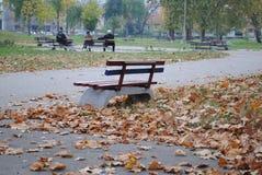 Bank in het park en de gevallen bladeren stock afbeeldingen
